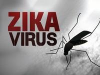 Colombia tuyên bố hết dịch Zika