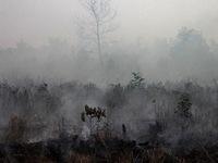 Indonesia đối phó với ô nhiễm sau cháy rừng