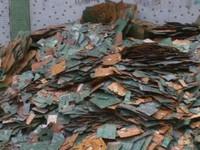 Trung Quốc: Nguy cơ chết người từ việc tái chế rác thải