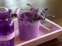 Sở thích về mùi hương tiết lộ tính cách