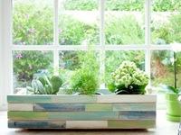 Trang trí cửa sổ với vườn treo  tự tạo