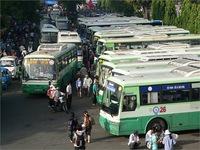 Tăng cường xử lý tài xế xe buýt sử dụng giấy phép lái xe giả