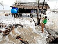 Biến đổi khí hậu ngày càng gây hậu quả khó lường