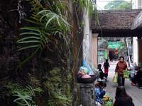 Phố có nhiều cổng làng nhất Hà Nội