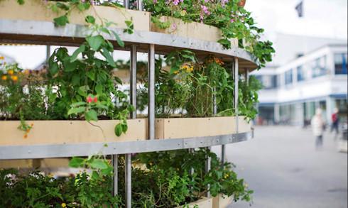 Trải nghiệm nhà sinh thái - kiến trúc xanh của tương lai - Ảnh 10.
