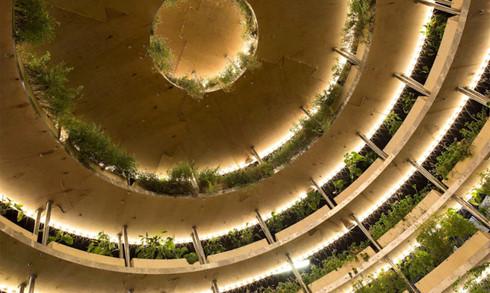 Trải nghiệm nhà sinh thái - kiến trúc xanh của tương lai - Ảnh 13.