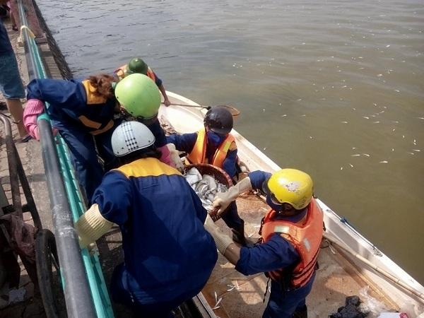 Hồ Tây:  Cá chết nổi lềnh bềnh, nồng nặc mùi hôi thối - Ảnh 9.
