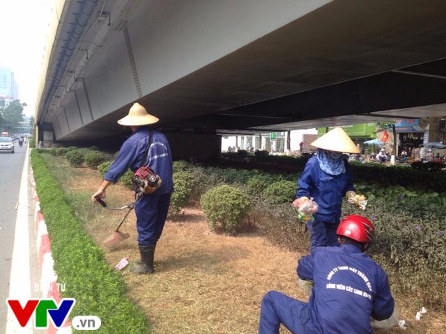 Sau 3 tháng tạm dừng, Hà Nội cắt cỏ trở lại - Ảnh 1.