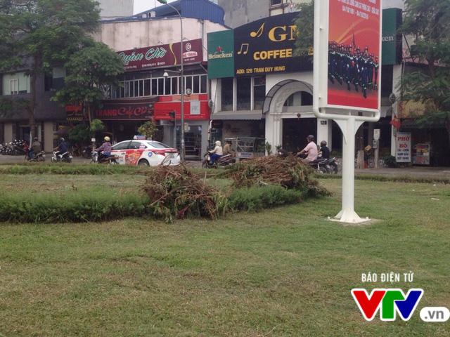 Sau 3 tháng tạm dừng, Hà Nội cắt cỏ trở lại - Ảnh 3.