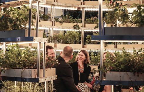 Trải nghiệm nhà sinh thái - kiến trúc xanh của tương lai - Ảnh 14.