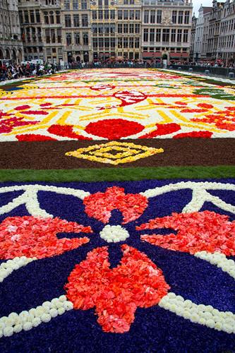 Choáng ngợp với 600.000 bông hoa tạo nên thảm hoa khổng lồ ở Bỉ - Ảnh 3.