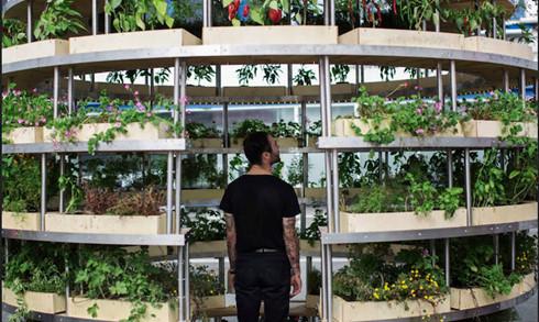 Trải nghiệm nhà sinh thái - kiến trúc xanh của tương lai - Ảnh 4.