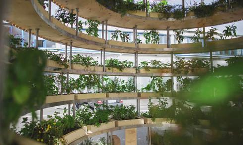 Trải nghiệm nhà sinh thái - kiến trúc xanh của tương lai - Ảnh 5.