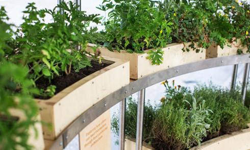 Trải nghiệm nhà sinh thái - kiến trúc xanh của tương lai - Ảnh 6.