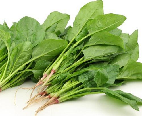 Bỏ túi 4 cách giảm mỡ bụng bằng rau quả hiệu quả nhất - Ảnh 4.
