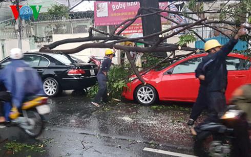 Liên tiếp 2 vụ cây gãy đổ, đè vào ô tô tại TP.HCM - Ảnh 3.