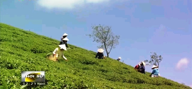 Quảng bá nông sản Việt Nam thông qua du khách - Ảnh 4.