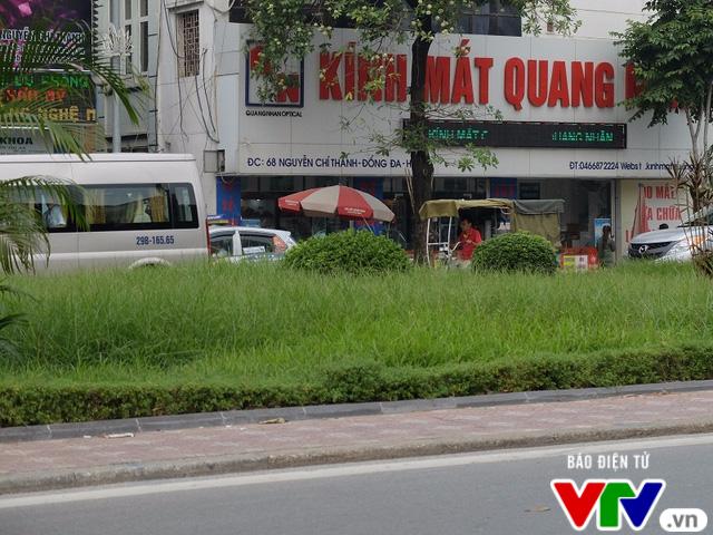 Sau 3 tháng tạm dừng, Hà Nội cắt cỏ trở lại - Ảnh 6.