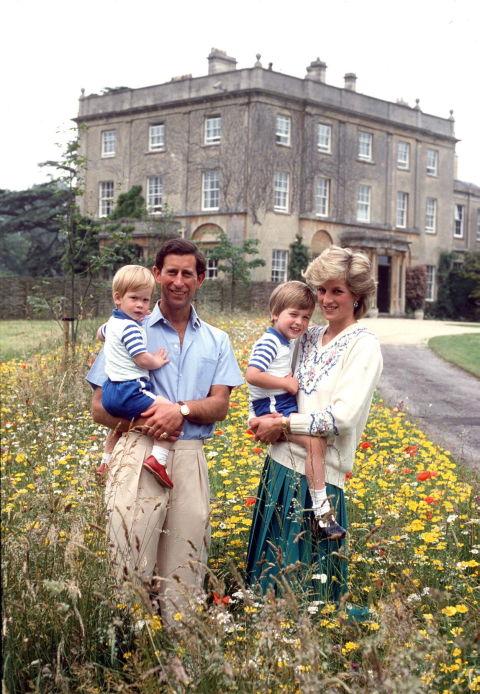 Những bức ảnh rất đẹp về Công nương Diana mà bạn có thể chưa biết - Ảnh 4.