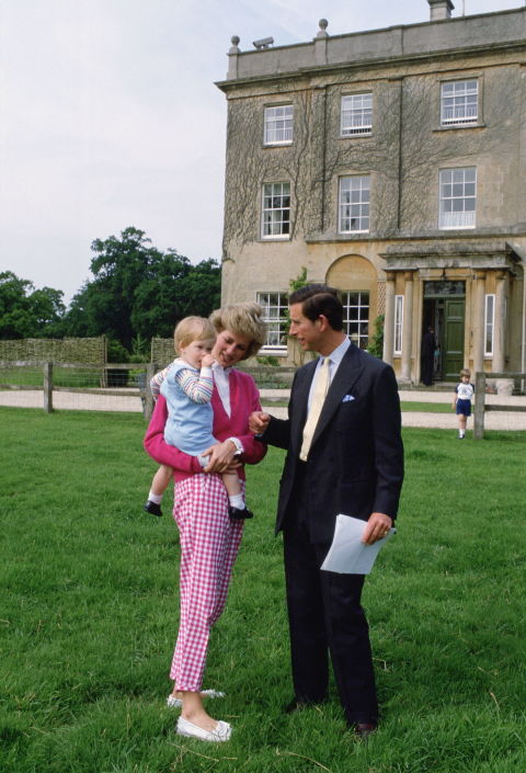 Những bức ảnh rất đẹp về Công nương Diana mà bạn có thể chưa biết - Ảnh 1.