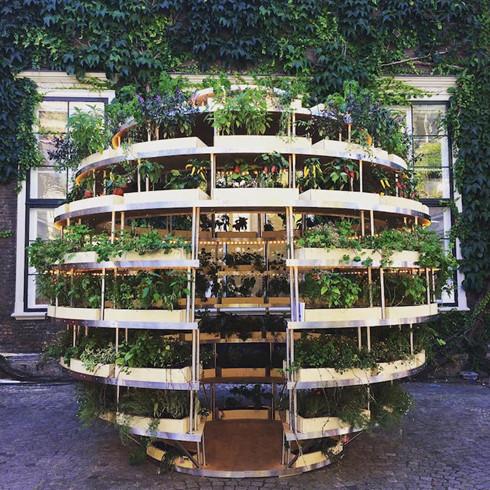 Trải nghiệm nhà sinh thái - kiến trúc xanh của tương lai - Ảnh 1.
