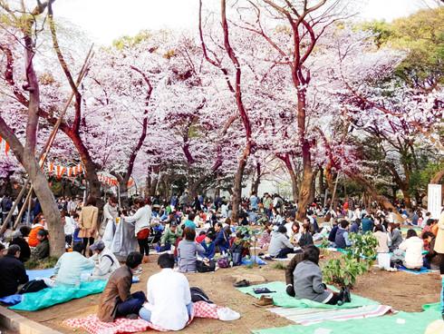 4 điều luật ở Nhật Bản gây bất ngờ đối với du khách - Ảnh 4.
