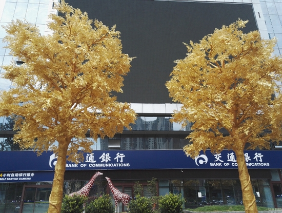 Hàng cây dát vàng gây tranh cãi ở Trung Quốc - Ảnh 1.