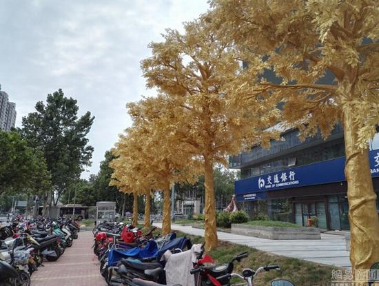 Hàng cây dát vàng gây tranh cãi ở Trung Quốc - Ảnh 3.