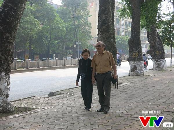 Hà Nội: Di chuyển hàng cây xanh phố Kim Mã, người dân tiếc hùi hụi - Ảnh 4.