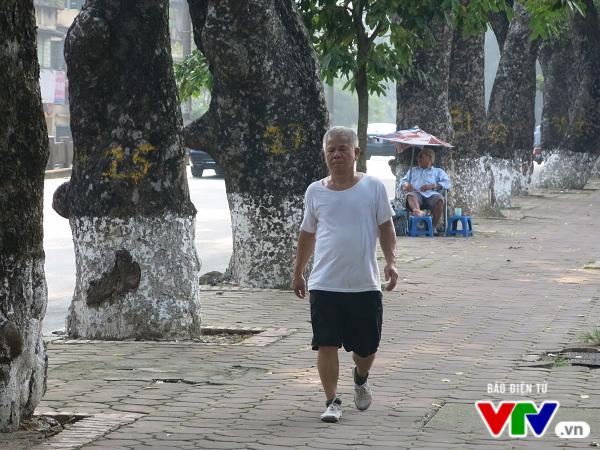 Hà Nội: Di chuyển hàng cây xanh phố Kim Mã, người dân tiếc hùi hụi - Ảnh 3.