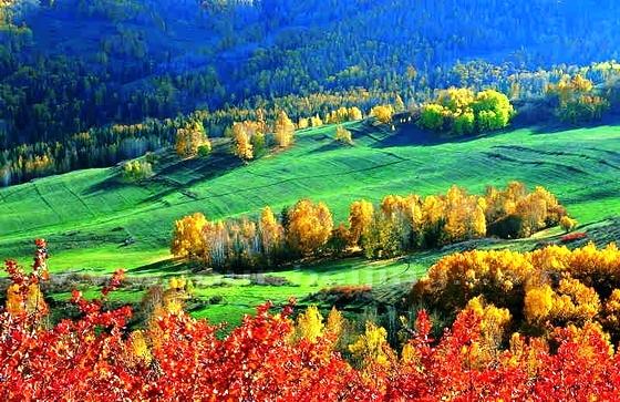 10 điểm ngắm mùa thu rực rỡ ở Trung Quốc - Ảnh 3.