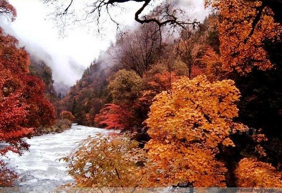 10 điểm ngắm mùa thu rực rỡ ở Trung Quốc - Ảnh 4.
