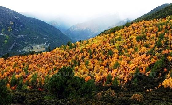 10 điểm ngắm mùa thu rực rỡ ở Trung Quốc - Ảnh 5.