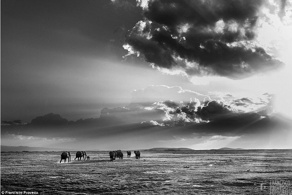 Rung động với những bức ảnh vùng nông thôn Kenya - Ảnh 1.