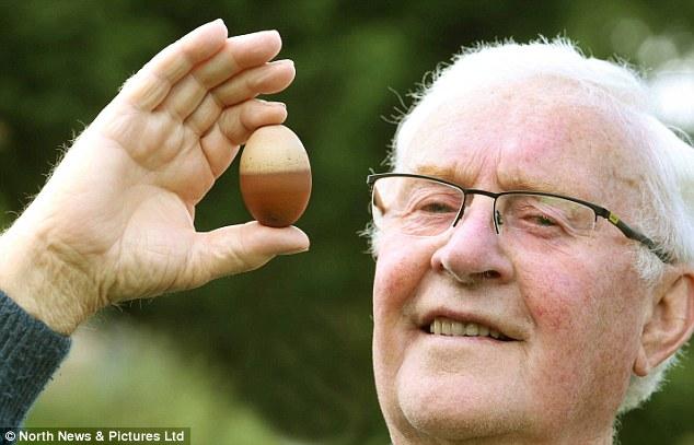 Quả trứng gà hai màu độc nhất vô nhị ở Anh - Ảnh 1.