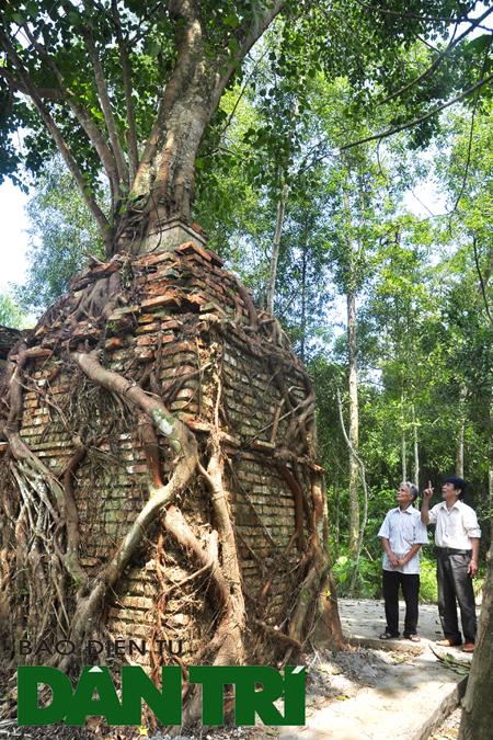 Kỳ bí cây bồ đề che chở am cổ hàng trăm năm tuổi - Ảnh 1.