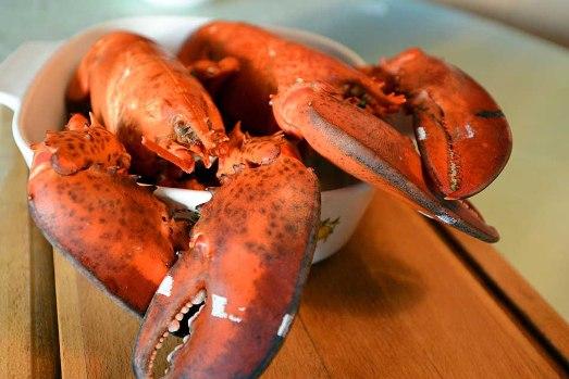 Những món hải sản chỉ dành cho giới nhà giàu - Ảnh 1.