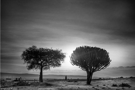Rung động với những bức ảnh vùng nông thôn Kenya - Ảnh 2.