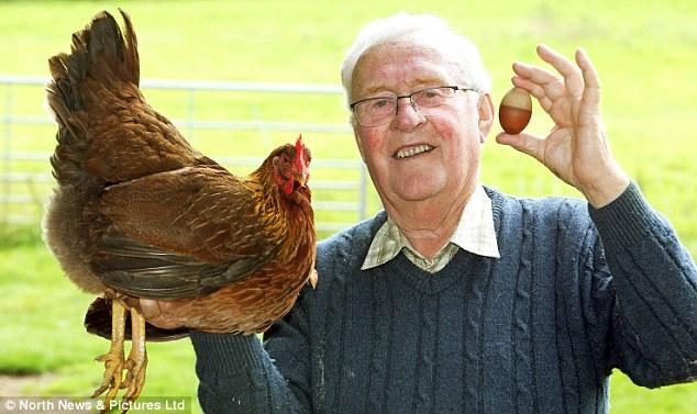 Quả trứng gà hai màu độc nhất vô nhị ở Anh - Ảnh 2.