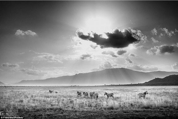 Rung động với những bức ảnh vùng nông thôn Kenya - Ảnh 3.