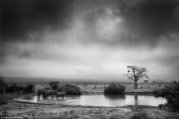 Rung động với những bức ảnh vùng nông thôn Kenya - Ảnh 5.