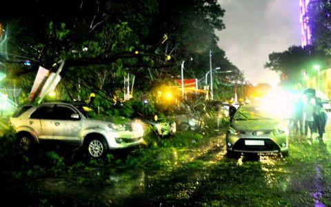 TP.HCM: Mưa lớn gây ngập đường, cây xanh ngã đổ đè phương tiện - Ảnh 1.