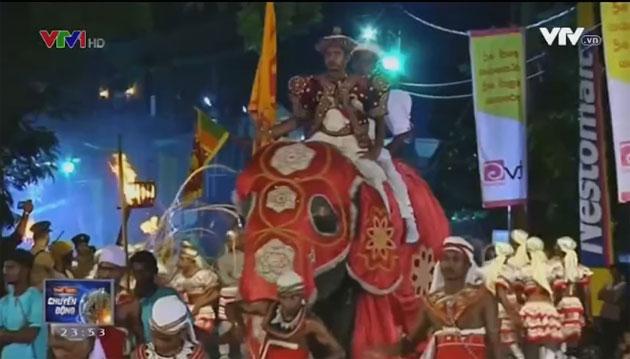 Độc đáo lễ hội diễu hành voi cầu bình an - Ảnh 1.