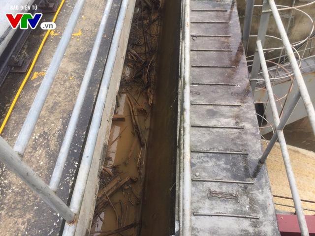 Cơn lũ gỗ thượng nguồn đổ về đập thủy điện Hố Hô (Hà Tĩnh) - Ảnh 2.