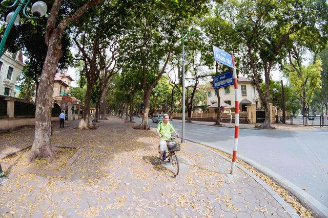 Con đường lãng mạn nhất Hà Nội đẹp ngỡ ngàng mùa cây thay lá - ảnh 1