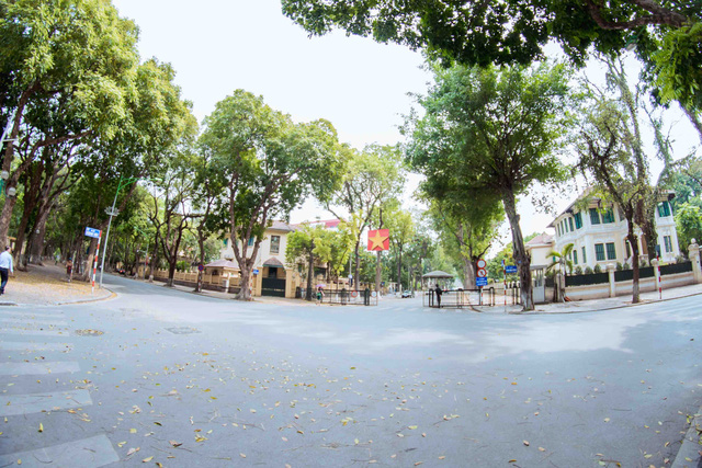 Con đường lãng mạn nhất Hà Nội đẹp ngỡ ngàng mùa cây thay lá - ảnh 11