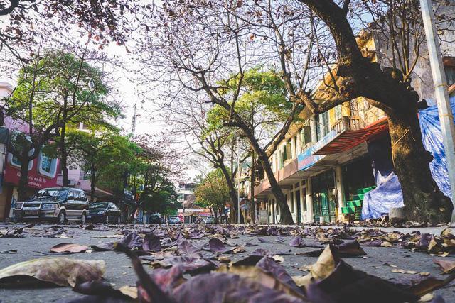 Ngỡ ngàng vẻ đẹp của Hà Nội trong tiết giao mùa tháng 4 - Ảnh 6.