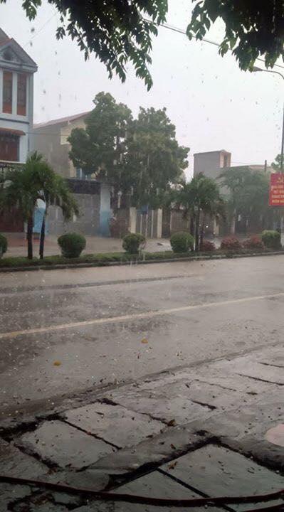Huyện Ba Vì, Sơn Tây bất ngờ xuất hiện mưa đá - Ảnh 4.