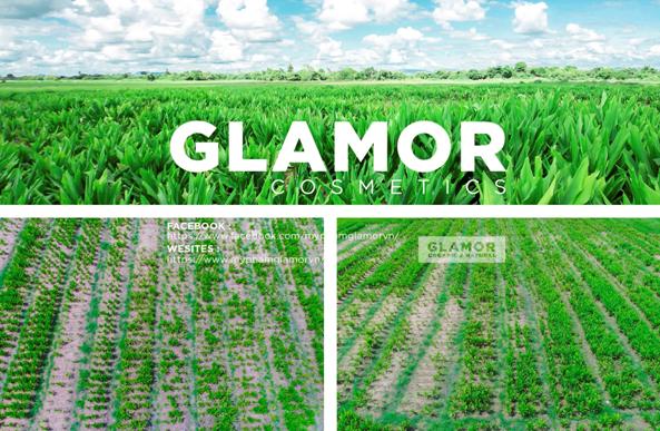 Có gì trong công thức mỹ phẩm tự nhiên 100% của Glamor? - Ảnh 2.