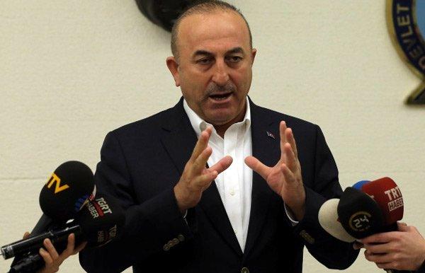 Hà Lan quyết định trục xuất một bộ trưởng của Thổ Nhĩ Kỳ - Ảnh 1.